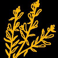 branches-jaunes